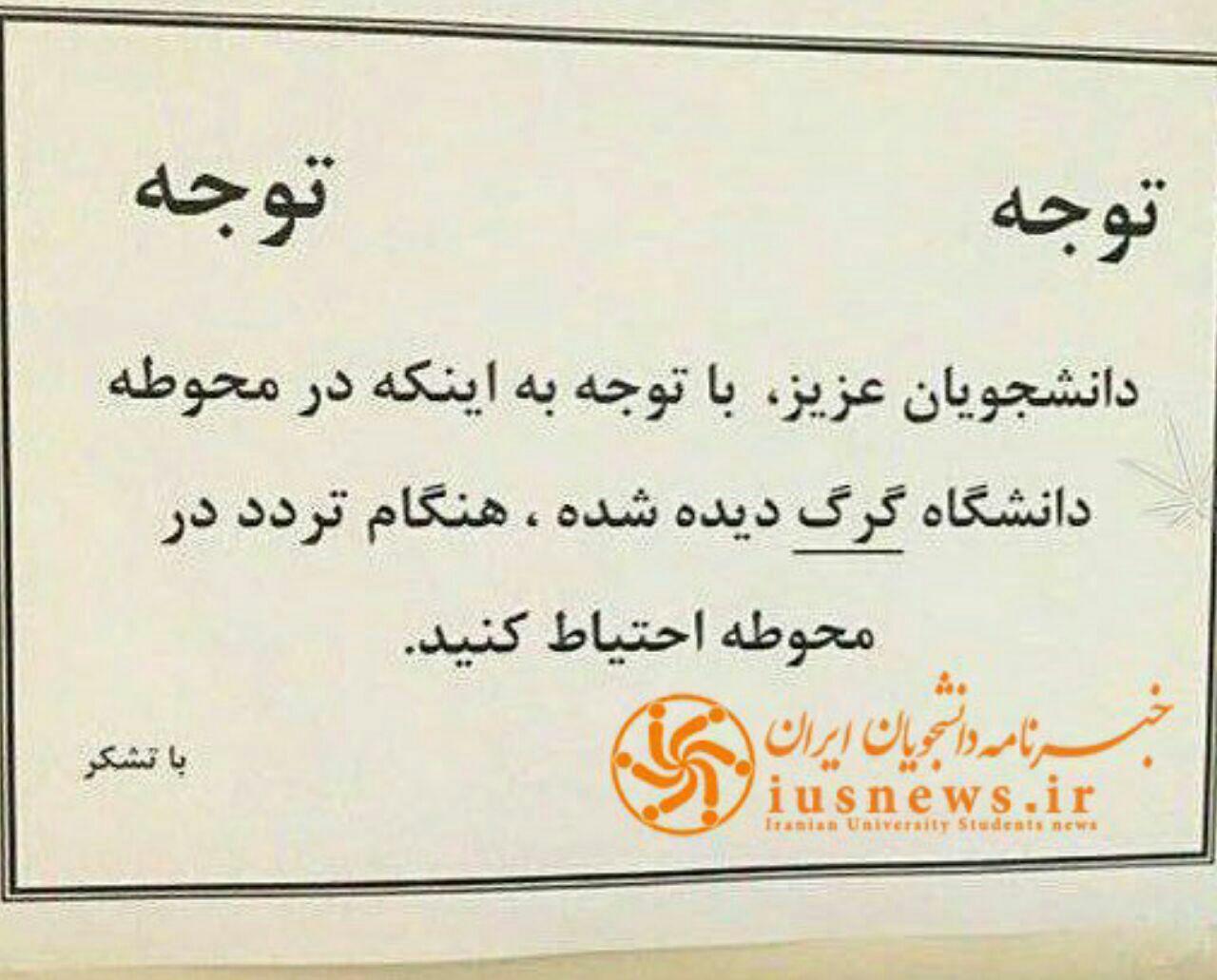 اطلاعیهای عجیب در دانشگاه آزاد کرمانشاه! +عکس