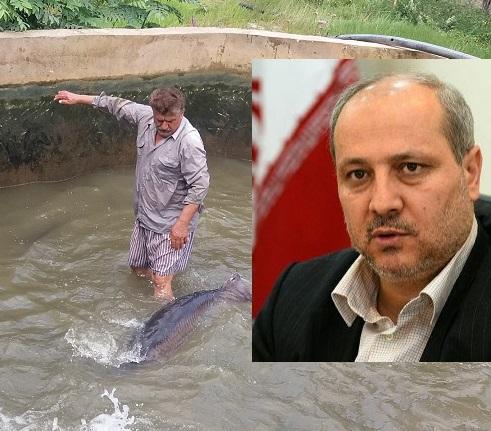 چرا استاندار گلستان از وجود مشکلات در بزرگترین مجتمع پرورش ماهیان خاویاری درکردکوی غافل است؟