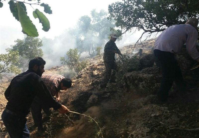 آتش سوزی همزمان در دو منطقه جنگلی شهرستان بویراحمد