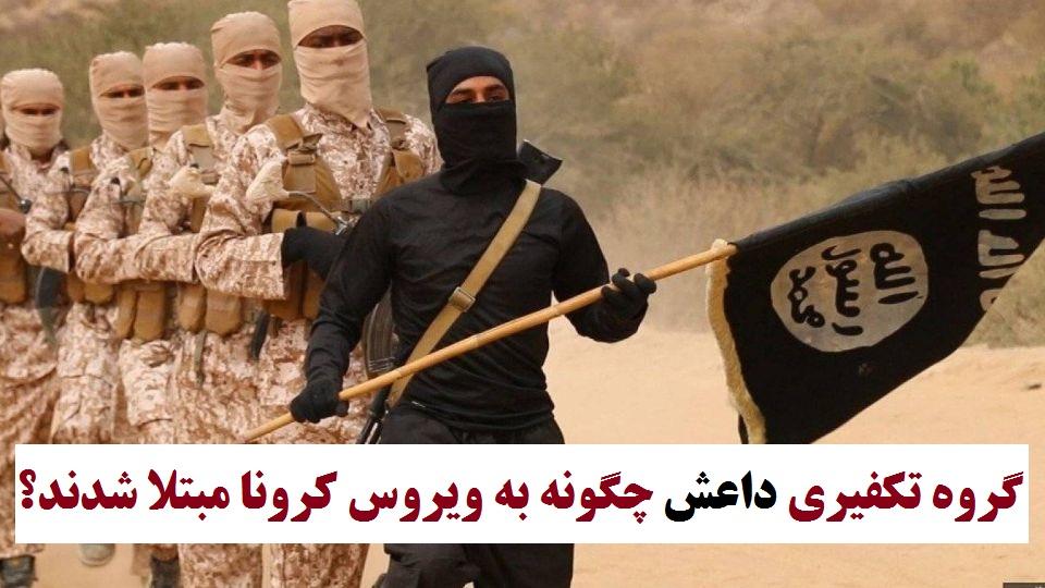 گروه تکفیری داعش چگونه به ویروس کرونا مبتلا شدند؟+جزئیات