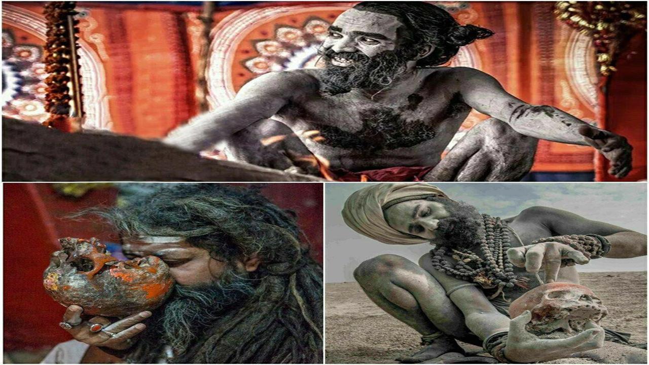 از آدمخواری تا پیشگویی با استفاده از مردگان