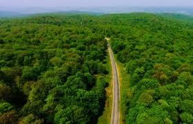 درخواست سازمان جنگلها از رئیسی برای ورود به پرونده ۵۶۰۰ هکتاری جنگلهای هیرکانی